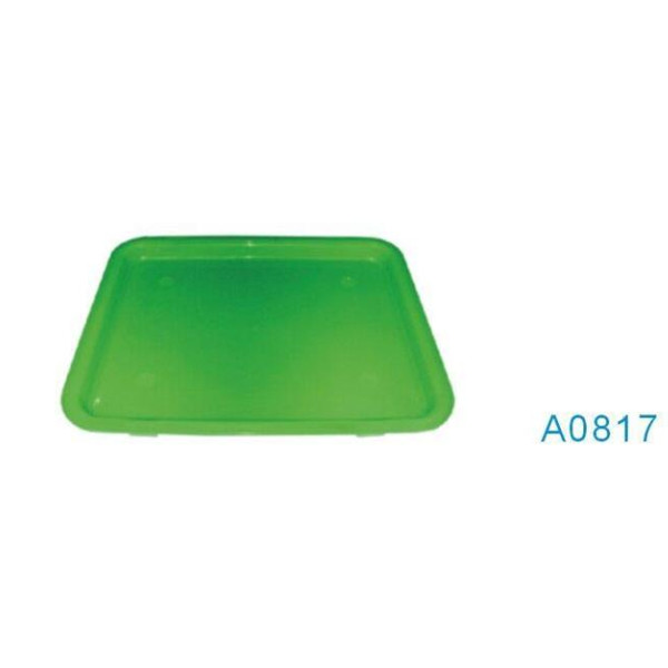 A0817 green color esd tray